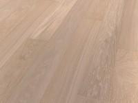 Дуб серовато-белый A17
