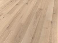 Дуб серовато-белый A19