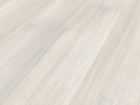 Сосна итальянская белая A03